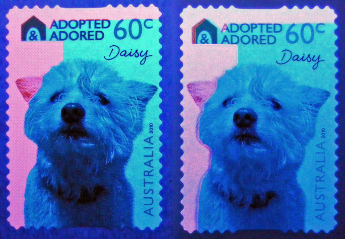 Adopted and Adored stamps under UV light